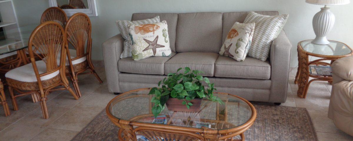 Unit 28 Main Living Room